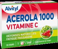 Govital Acerola 1000 à VALENCE
