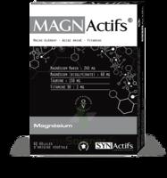 Synactifs Magnactifs Gélules B/60 à VALENCE