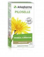 Arkogélules Piloselle Gélules Fl/45 à VALENCE