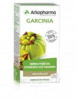 Arkogélules Garcinia Gélules Fl/45 à VALENCE