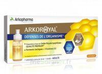 Arkoroyal Défenses Naturelles Gelée Adulte 7 Doses/10ml à VALENCE