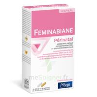 Pileje Feminabiane Périnatal 28 Gélules Blanches Et 28 Gélules Jaunes à VALENCE