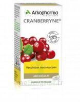 Arkogélules Cranberryne Gélules Fl/45 à VALENCE