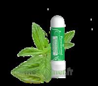 Puressentiel Respiratoire Inhaleur Respiratoire Aux 19 Huiles Essentielles - 1 Ml à VALENCE