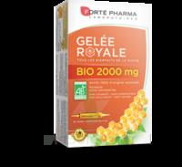 Forte Pharma Gelée Royale Bio 2000 Mg Solution Buvable 20 Ampoules/15ml à VALENCE