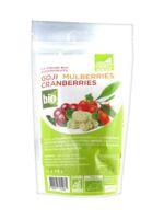 Exopharm Goji Mulberries Cranberries Bio 250g à VALENCE