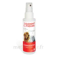 Clément Thékan Caniderma Solution Externe Cicatrisant Spray/125ml à VALENCE
