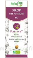 Herbalgem Sirop Bio Des Fumeurs 150ml à VALENCE