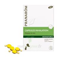 Aromaforce Caps Inhalation Bio B/15 + Inhalateur à VALENCE