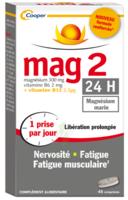 Mag 2 24h Comprimes B/45+15 Offert à VALENCE
