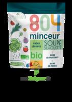 804® Minceur Soupe Silhouette Bio Sachet/180g à VALENCE
